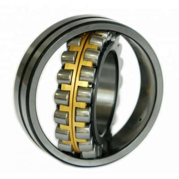 NACHI 6206ZZENR C3  Single Row Ball Bearings